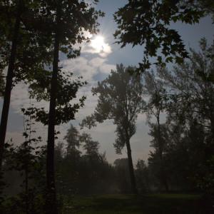 Notte di luna piena   Palù  (TV)