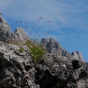 Monte Agnèr (2.872 m s.l.m.)