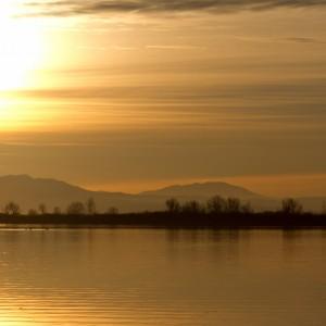 Riserva Naturale Regionale della Foce del fiume Isonzo