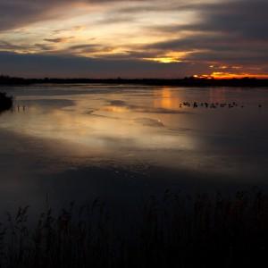 Marano Lagunare riserva naturale