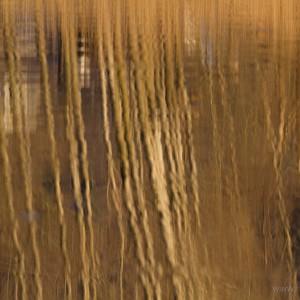 Riflessi Lago di Lago